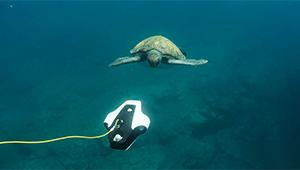 Navatics MITO Underwater Drone_Lifestyle_05_THN